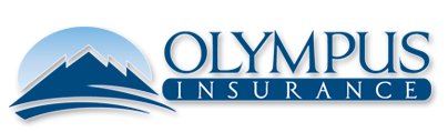 Olympus Logo in white and blue